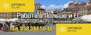 Помощь в переезде всей семьи в Польшу для украинских специалистов
